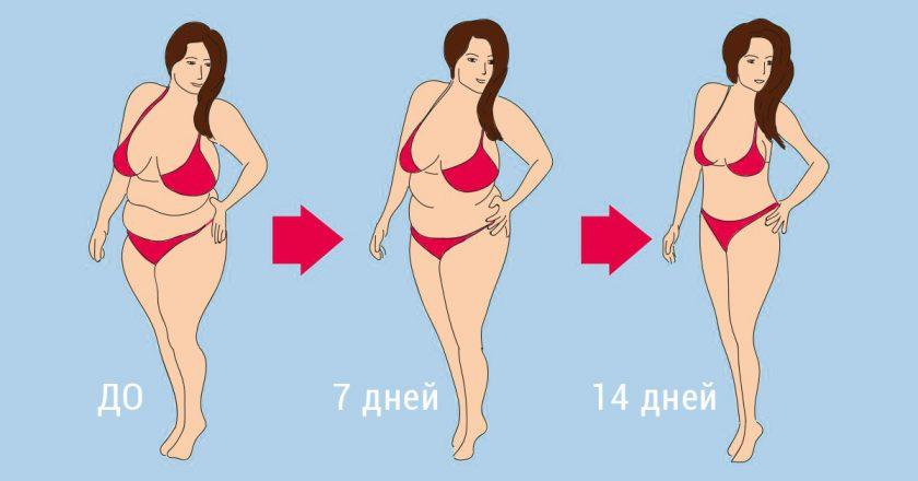 как похудеть в спортзале женщине